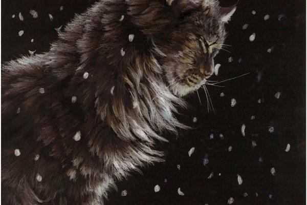 snowkitty