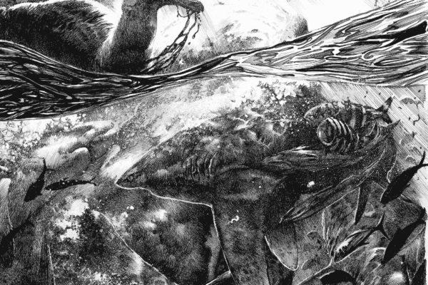 shark massacre