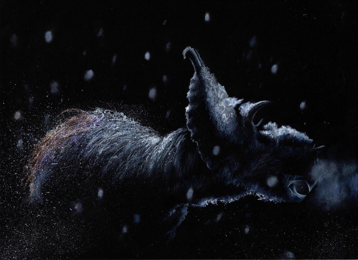 pachyrhinosaur